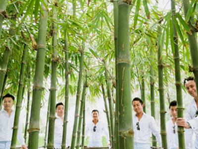 Bamboo gang